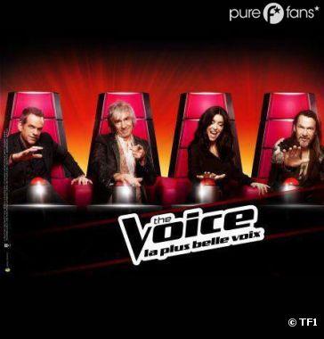 The Voice pourrait revenir pour une saison 3 sur TF1 en 2014.