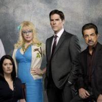 Esprits Criminels saison 9, The Carries Diaries saison 2 : renouvellements et annulations en séries