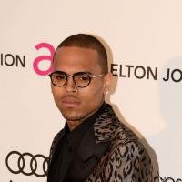 Chris Brown : Rihanna effacée de son nouvel album X ?