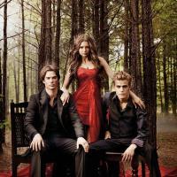 The Vampire Diaries saison 5, Arrow saison 2 : retour automnal pour les séries de la CW