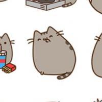 Facebook - nouveaux smileys : chat qui pète, vomi... le réseau social devient kikoolol