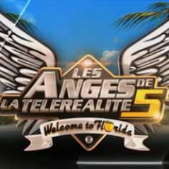 Les Anges de la télé-réalité 5 : LA saison de tous les succès en chiffres clés
