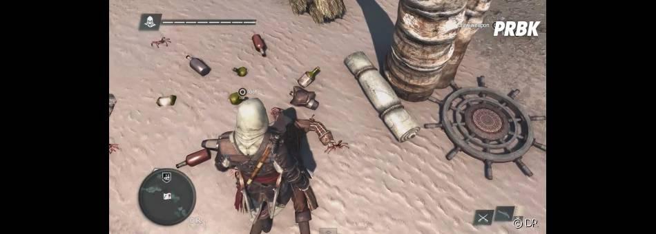 Assassin's Creed 4 Black Flag présentera un univers plus vaste