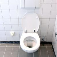 Le 19 novembre, journée mondiale des toilettes : une idée de chiottes ?