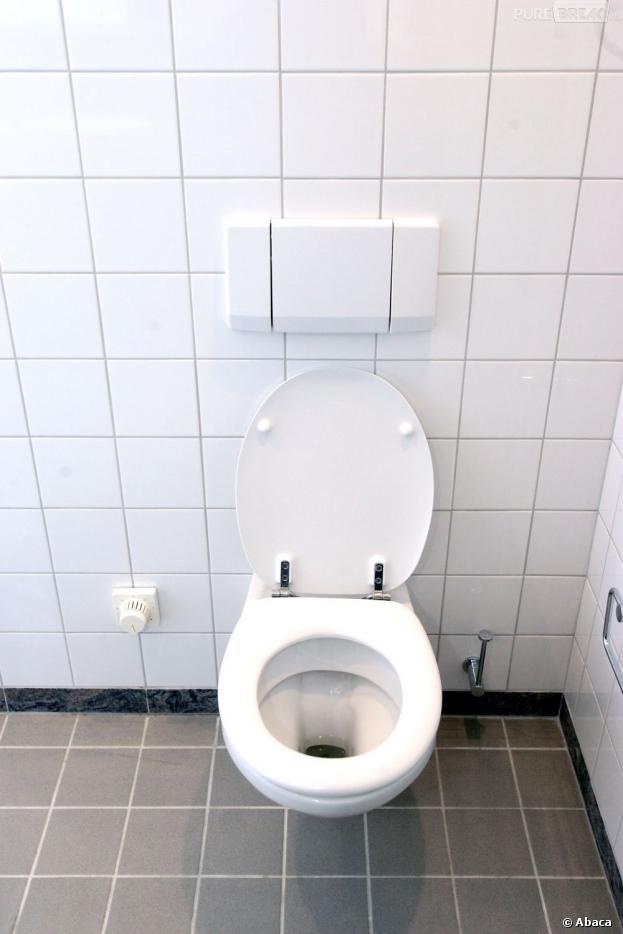 Le 19 novembre décrété Journée Mondiale des toilettes