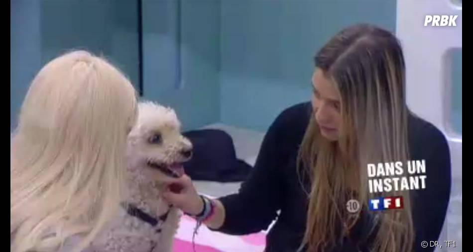 Secret Story 7 : Clara parle au chien de Florine dans la Maison des secrets.
