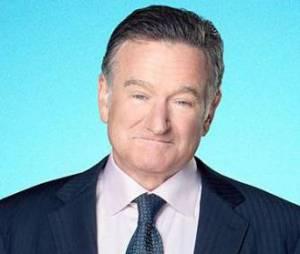 The Crazy Ones saison 1 : Robin Williams débarque à la télé