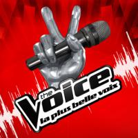 The Voice 3 : Ginie Line aux auditions, et pourquoi pas Michal, Quentin Elias ou Cecilia Cara ?