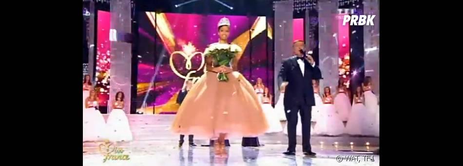Flora Coquerel, Miss Orléanais, sacrée Miss France 2014