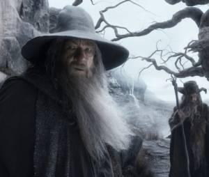 The Hobbit 2 : la Désolation de Smaug - Gandalf en danger