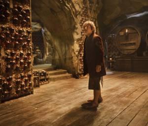 The Hobbit 2 : la Désolation de Smaug - Bilbo en danger