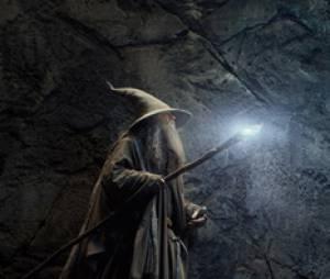 The Hobbit 2 : la Désolation de Smaug - Gandalf, le nouveau Dumbledore