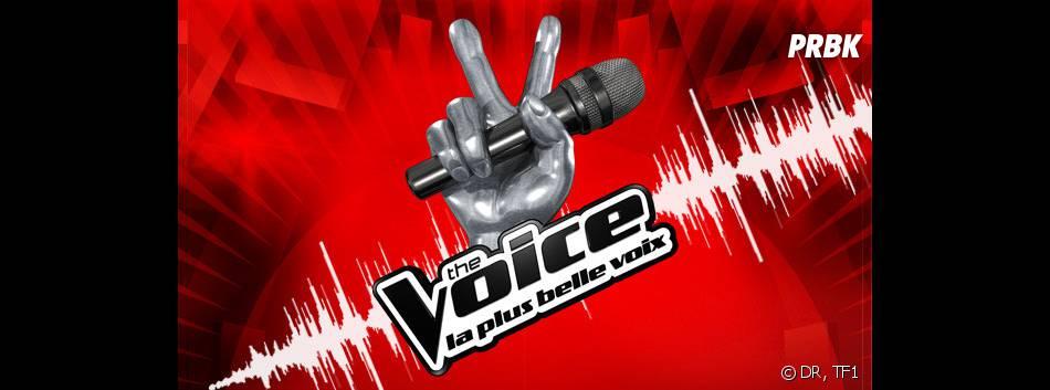 The Voice 3 : les jurés en train de faire passer les auditions à l'aveugle