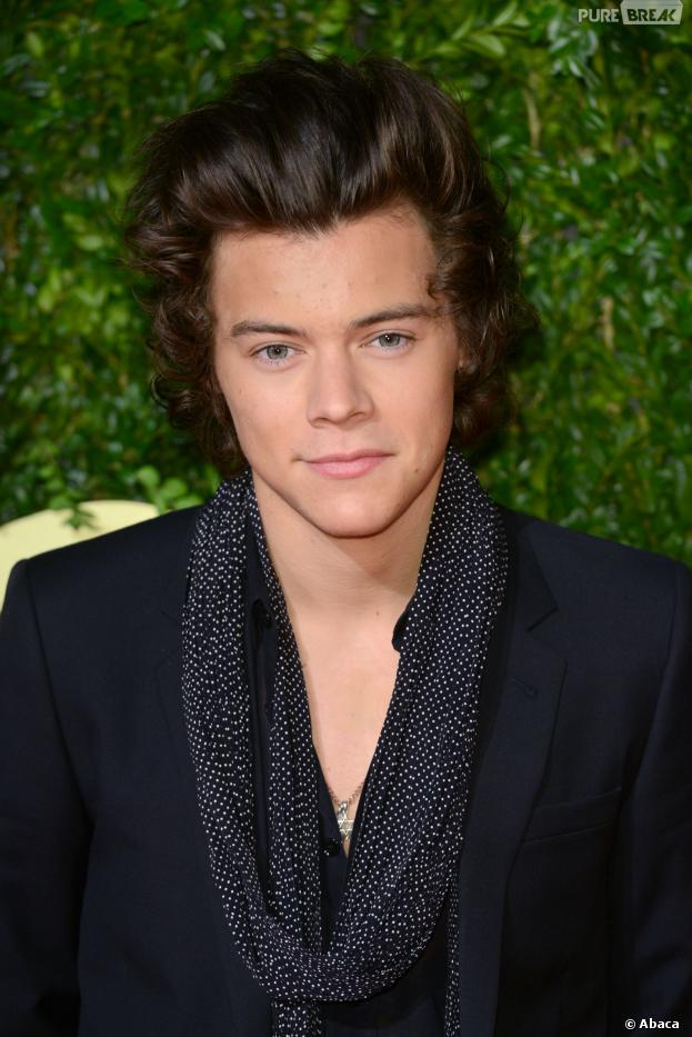 Harry Styles : à quand l'officialisation avec Kendall Jenner ?