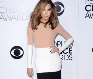 People's Choice Awards 2014 : Naya Rivera sur le tapis-rouge le 8 janvier 2014 à Los Angeles