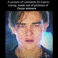 [FUN] Pas d'Oscar pour Leonardo DiCaprio : top 10 des meilleures parodies du web