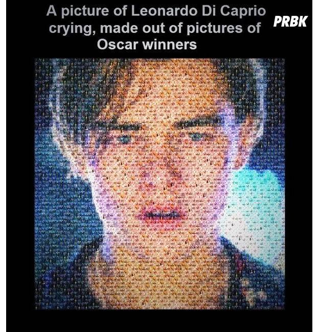 Photo de Leonardo DiCaprio en pleurs