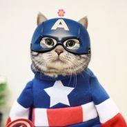 [FUN] Zhumao KeLe, le chat star du web qui se déguise en super-héros !