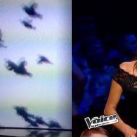 Jenifer enceinte et sexy VS Karine Ferri : battle look de la finale de The Voice