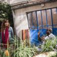 Nos Chers Voisins :Laetitia Milot débarque