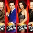 The Voice 4 : Florent Pagny remplacé par Patrick Bruel ?