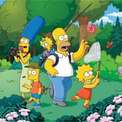 Les Simpson : mort émouvante mais décevante pour un personnage ?