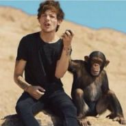 One Direction : le clip Steal My Girl censuré et supprimé après un record ?