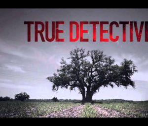 La saison 2 de True Detective complète son casting
