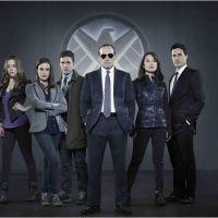 Agents of Shield saison 1 : faut-il regarder la série sur W9 ?