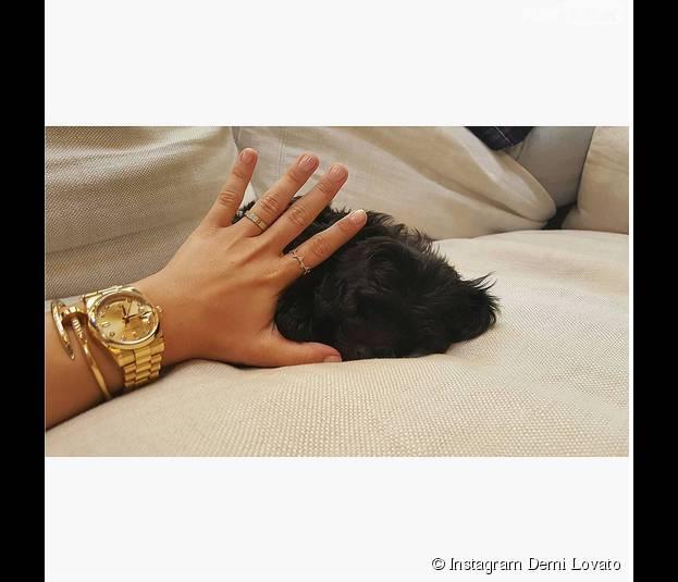 Demi Lovato : elle présente son nouveau chien Batman sur Instagram