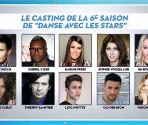 Danse avec les Stars 6 : le casting complet dévoilé dans TPMP ?