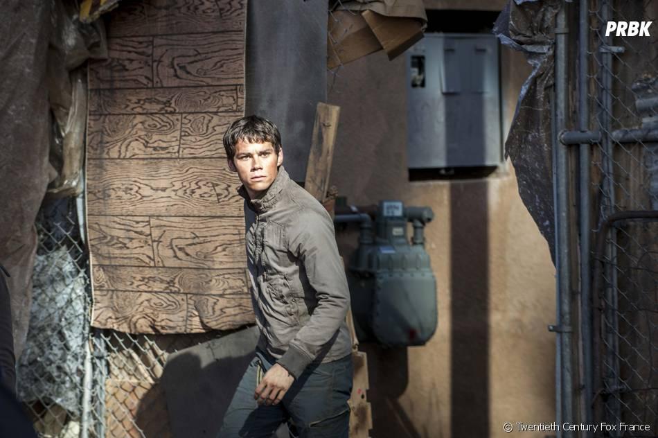 Le Labyrinthe 2 : Dylan O'Brien (Thomas) sur une photo