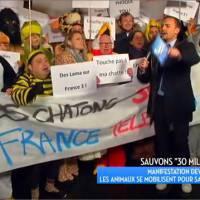 """Bertrand Chameroy manifeste pour 30 Millions d'amis : """"Touche pas à ma chatte !"""""""
