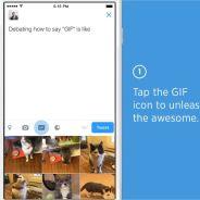 Twitter : un moteur de recherche de GIFs débarque pour vos tweets et DM