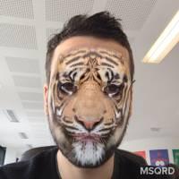 MSQRD : l'appli de selfies WTF rachetée par Facebook... et bientôt dispo directement dessus ?