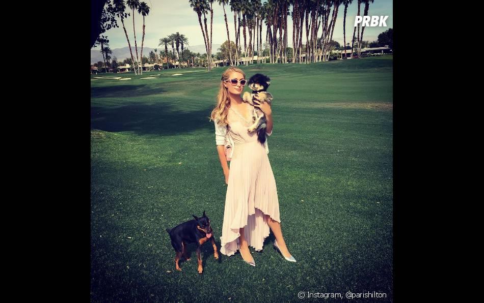Paris Hilton prend la pose avec ses chiens