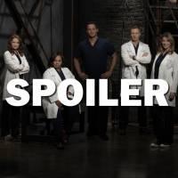 Grey's Anatomy saison 12 : un bébé, un départ et un mariage, 5 choses à retenir du final