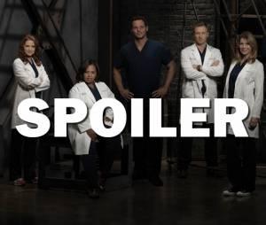 Grey's Anatomy saison 12 : 5 choses à retenir du final