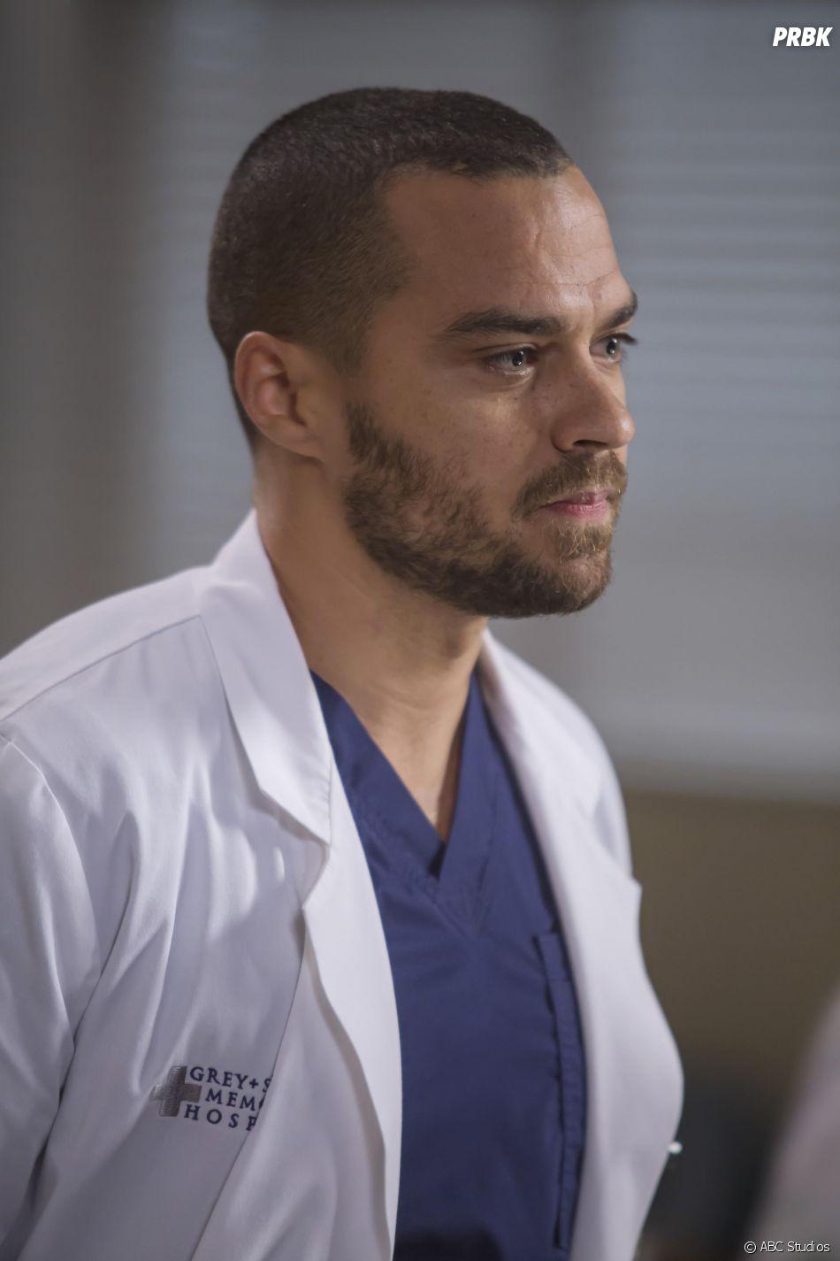 Grey S Anatomy Streaming Images - human body anatomy