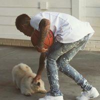 Justin Bieber : son chien a son propre compte Instagram... et vous allez craquer 🐶