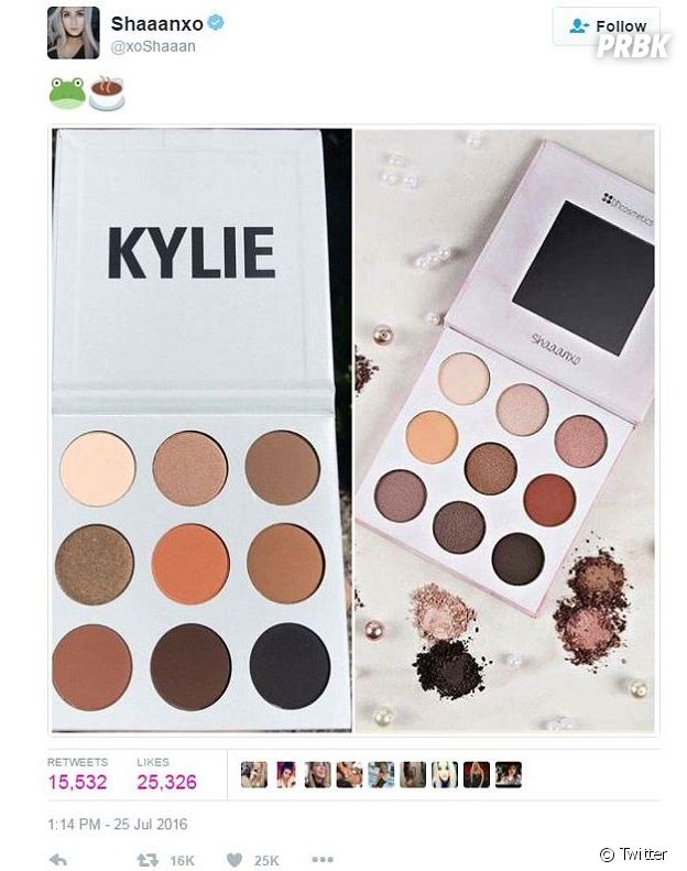 Shaaanxo avait elle aussi accusé Kylie Jenner de plagiat à propos de sa palette de makeup.