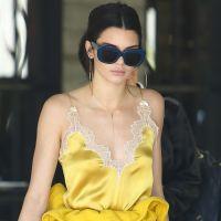 """Kendall Jenner """"angoissée et en pleurs"""" : """"Je fais des crises de panique"""""""