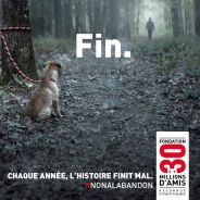 #NONALABANDON : la vidéo poignante de 30 Millions d'Amis contre la lâcheté et l'abandon d'animaux