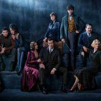 Les Animaux Fantastiques 2 : première photo du film avec Jude Law en Dumbledore