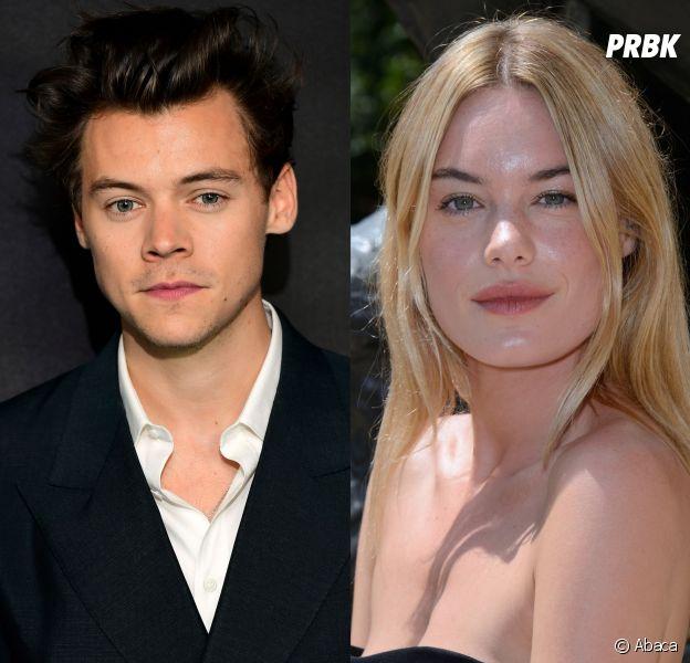 Harry Styles célibataire : l'ex One Direction serait séparé de la française Camille Rowe !