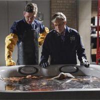 NCIS saison 16 : après Abby, un autre personnage historique va-t-il quitter la série ?