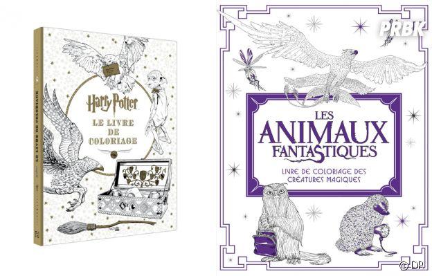 Nos idées de cadeaux de Noël 2018 : les livres de coloriages Harry Potter