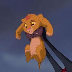Le Roi Lion : mais que signifient les paroles en zoulou de la chanson L'histoire de la vie ?