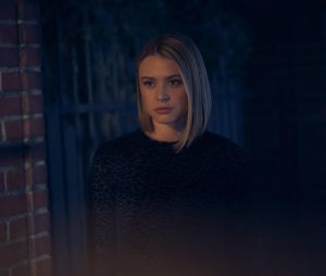 The Perfectionists : Hayley Erin