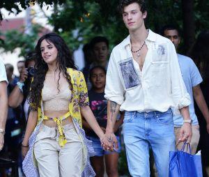 Shawn Mendes et Camila Mendes, un faux couple ? Le chanteur réagit